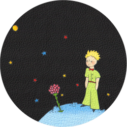 Bag Customisation The Little Prince