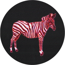 Bag Customisation Pink Zebra