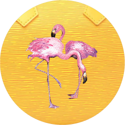 Flamingo's Customisation
